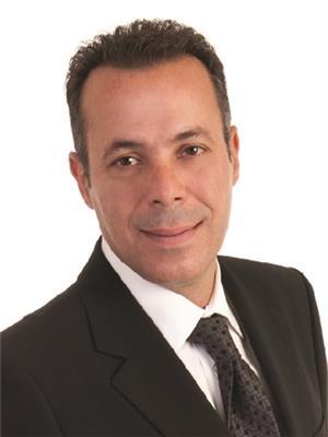 Amer Haidar