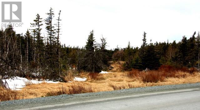 0 Thorburn Road, St. John's, Newfoundland & Labrador  A1B 4R2 - Photo 1 - 1128684