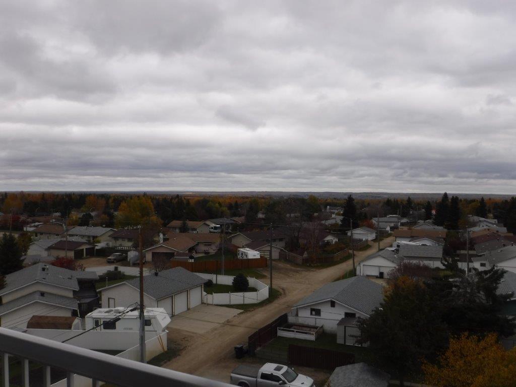 #407 4900 54 Av, Drayton Valley, Alberta  T7A 1V8 - Photo 2 - E4040863