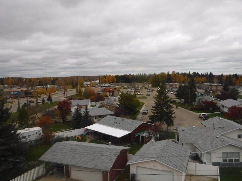 #407 4900 54 Av, Drayton Valley, Alberta  T7A 1V8 - Photo 3 - E4040863