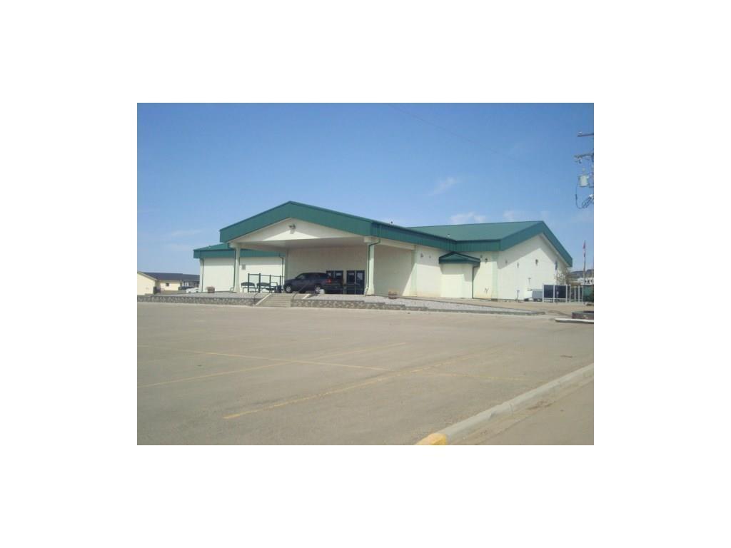 26 Evron Pl, Trochu, Alberta  T0M 2C0 - Photo 13 - C4117035