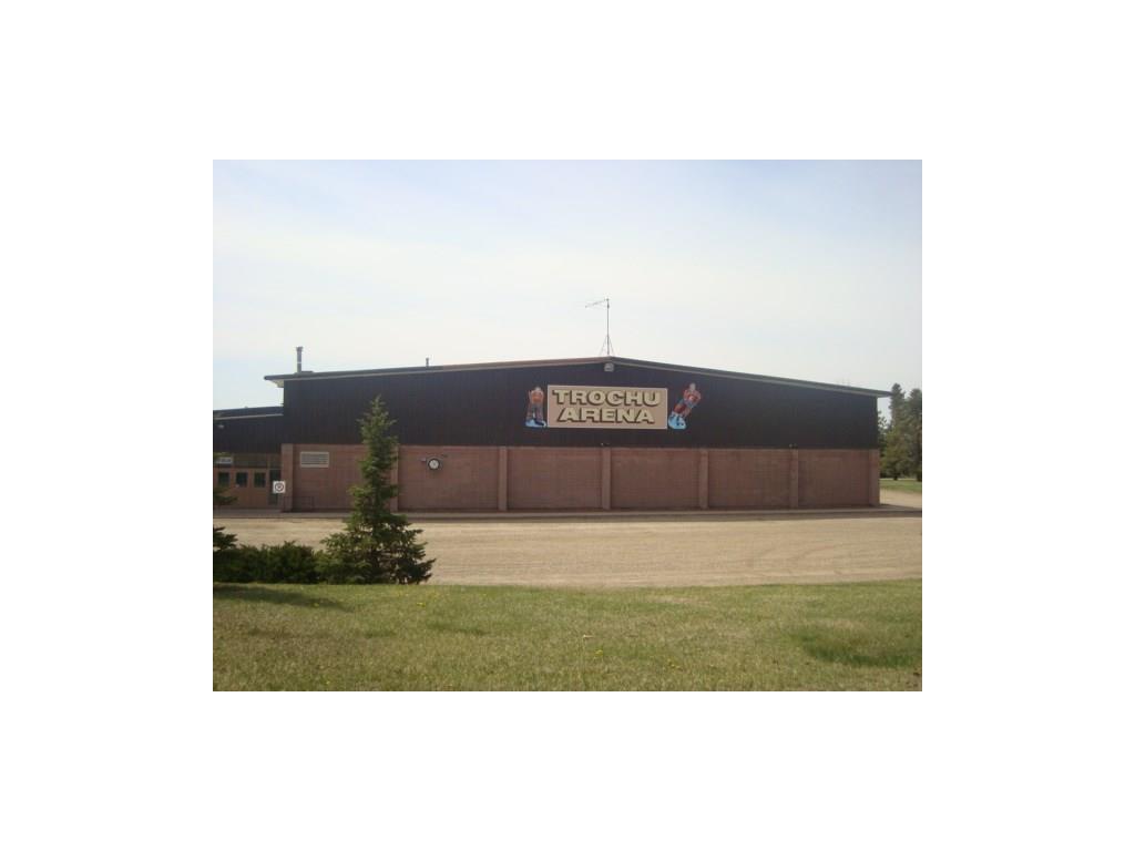 26 Evron Pl, Trochu, Alberta  T0M 2C0 - Photo 14 - C4117035