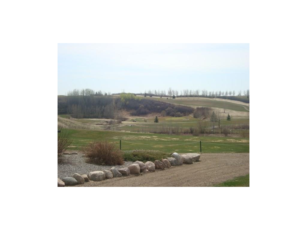 26 Evron Pl, Trochu, Alberta  T0M 2C0 - Photo 16 - C4117035