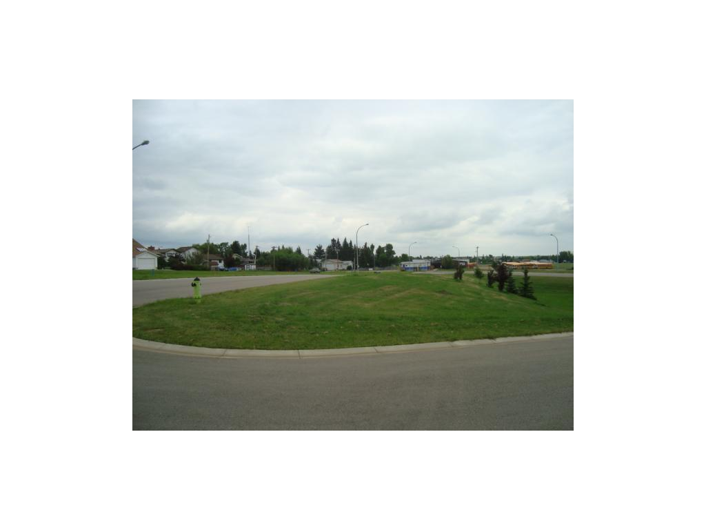 26 Evron Pl, Trochu, Alberta  T0M 2C0 - Photo 2 - C4117035
