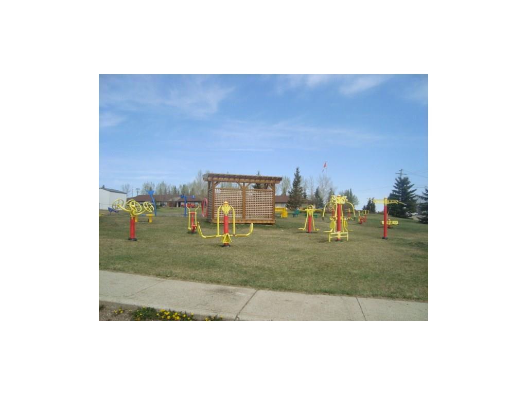 10 Trochu Av, Trochu, Alberta  T0M 2C0 - Photo 16 - C4117036