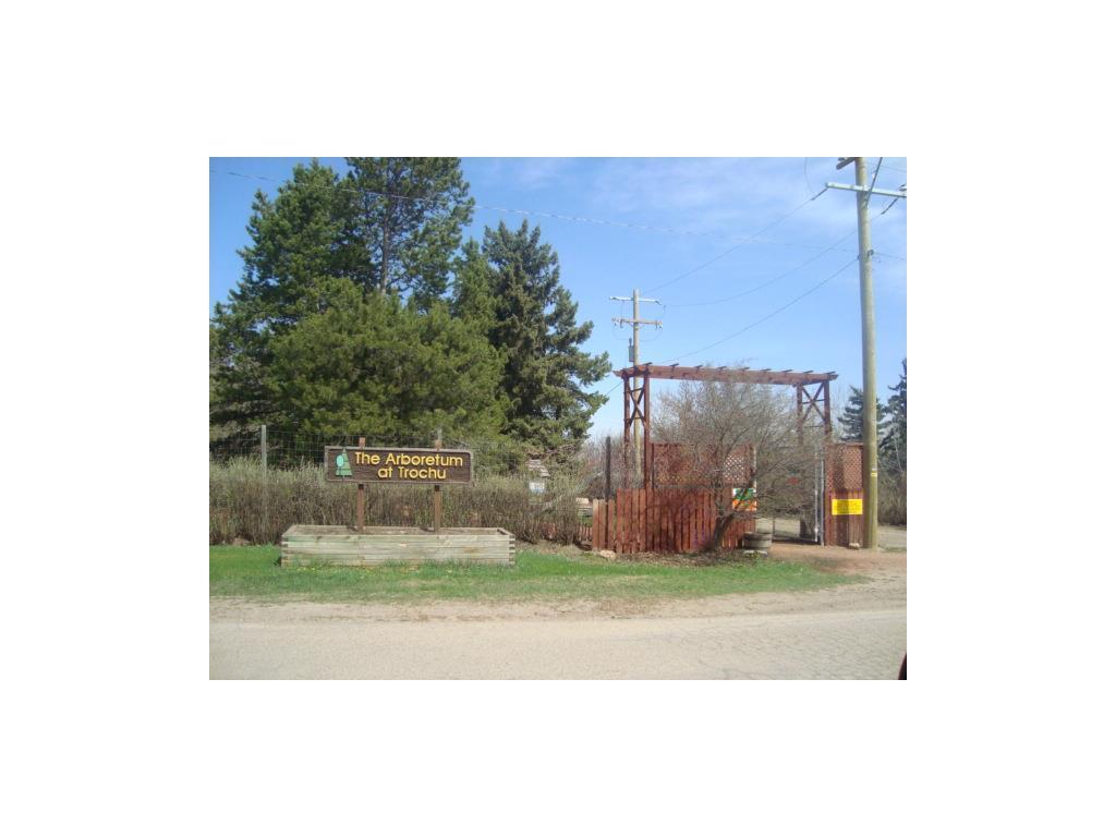 10 Trochu Av, Trochu, Alberta  T0M 2C0 - Photo 17 - C4117036