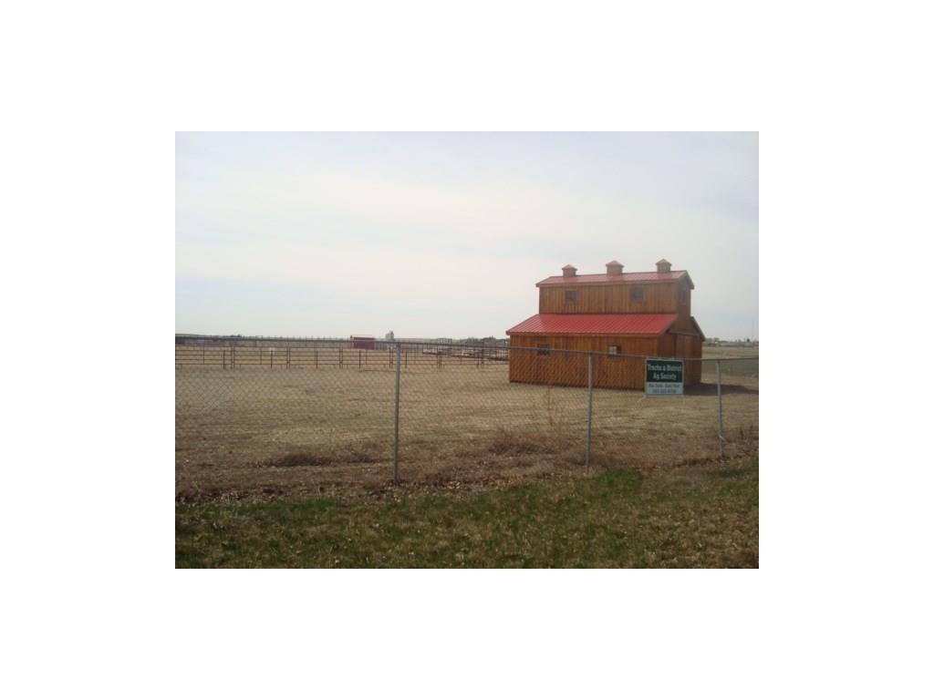 10 Trochu Av, Trochu, Alberta  T0M 2C0 - Photo 21 - C4117036