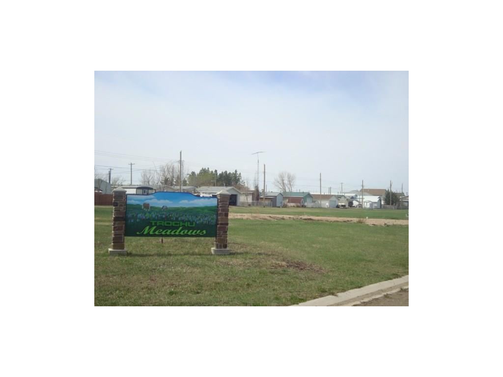 10 Trochu Av, Trochu, Alberta  T0M 2C0 - Photo 4 - C4117036