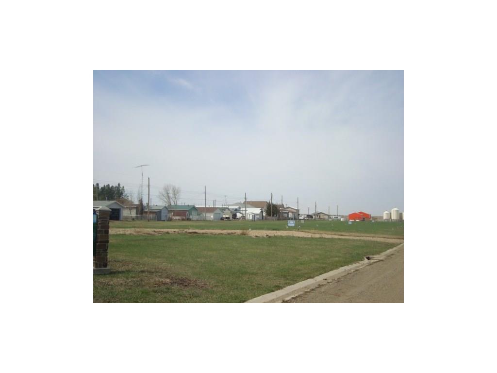 10 Trochu Av, Trochu, Alberta  T0M 2C0 - Photo 5 - C4117036