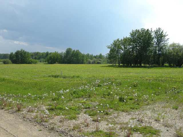 Lot 16, Phase Ii, Heritage Estates, Buck Lake, Ab Es, Rural Wetaskiwin County, Alberta  T0C 0T0 - Photo 11 - E3266265