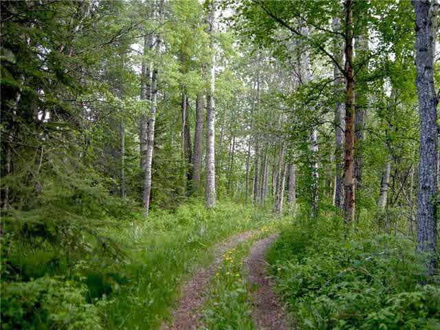 Lot 16, Phase Ii, Heritage Estates, Buck Lake, Ab Es, Rural Wetaskiwin County, Alberta  T0C 0T0 - Photo 6 - E3266265