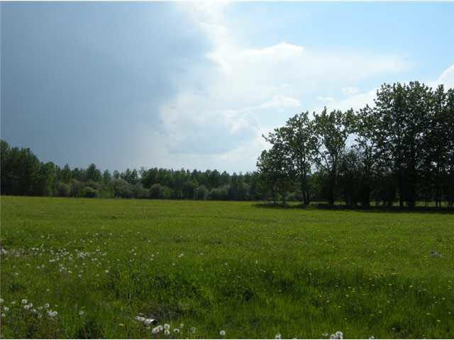 Lot 16, Phase Ii, Heritage Estates, Buck Lake, Ab Es, Rural Wetaskiwin County, Alberta  T0C 0T0 - Photo 7 - E3266265