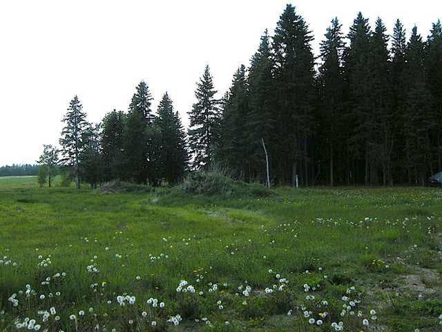 Lot 16, Phase Ii, Heritage Estates, Buck Lake, Ab Es, Rural Wetaskiwin County, Alberta  T0C 0T0 - Photo 9 - E3266265