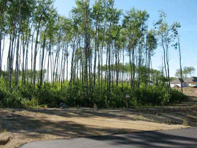 Lot 3 Whitetail Ridge Estates, Rural Bonnyville M.d., Alberta  T9M 1P1 - Photo 3 - E3394438