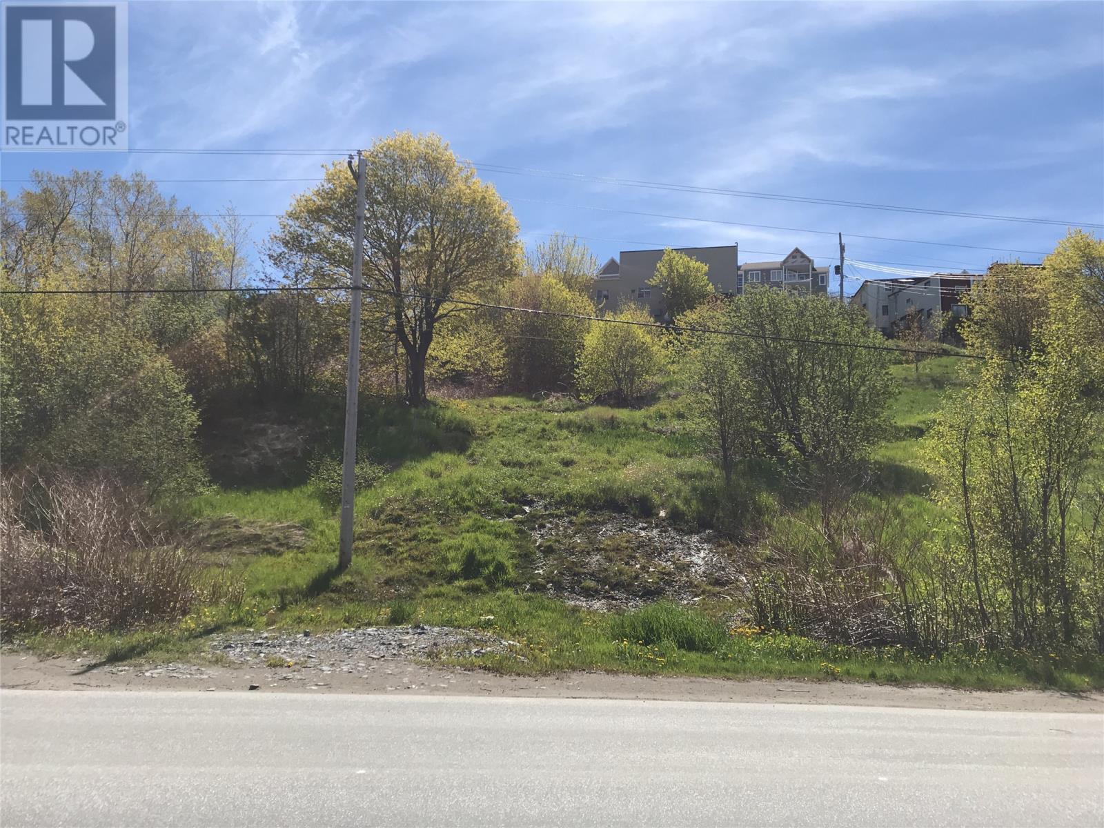 4 Fradshams Lane, Corner Brook, Newfoundland & Labrador  A2H 1X1 - Photo 2 - 1177918