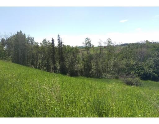 8020 87 Street, Fort St. John (Zone 60), British Columbia  V1J 4N8 - Photo 7 - C8019365