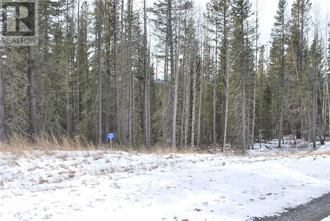 1253 Tamarack Trail, Nordegg, Alberta  T0M 2H0 - Photo 1 - ca0080665