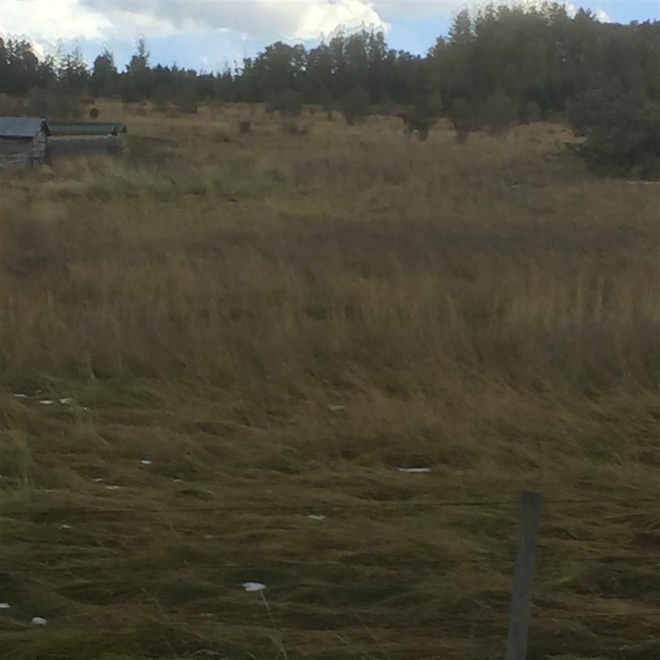 315 Hwy 13 East, Rural Wetaskiwin County, Alberta  T0C 0A0 - Photo 4 - E4129923