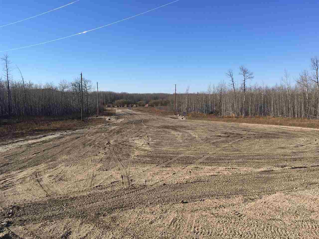 Rr 10 616x, Rural Wetaskiwin County, Alberta  T0C 2P0 - Photo 4 - E4126247