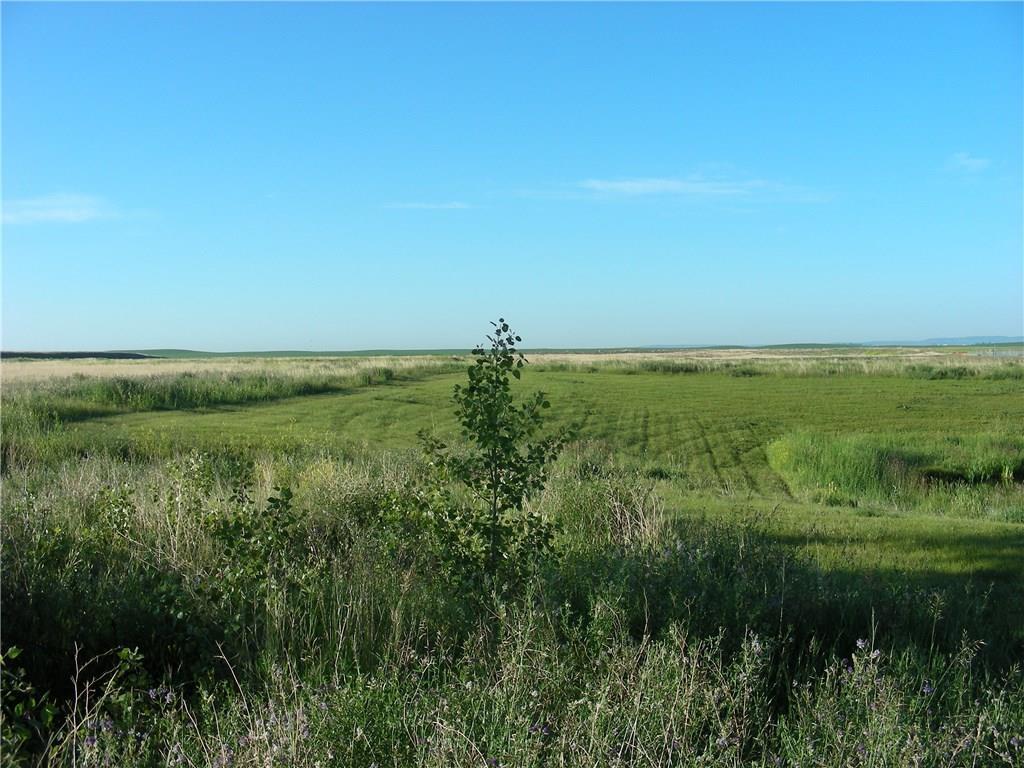 12 Av Se, High River, Alberta  T1V 2B1 - Photo 7 - C4194347