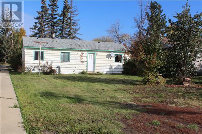 207 2nd Avenue Sw, Manning, Alberta, T0H2M0 | Photo: 2