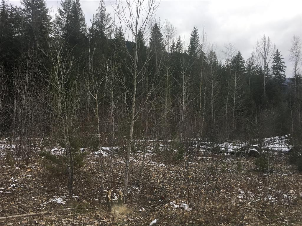 136acres Sugar Lake-Sihlis Road,, Vernon, British Columbia  V1H 2B1 - Photo 2 - 10139930