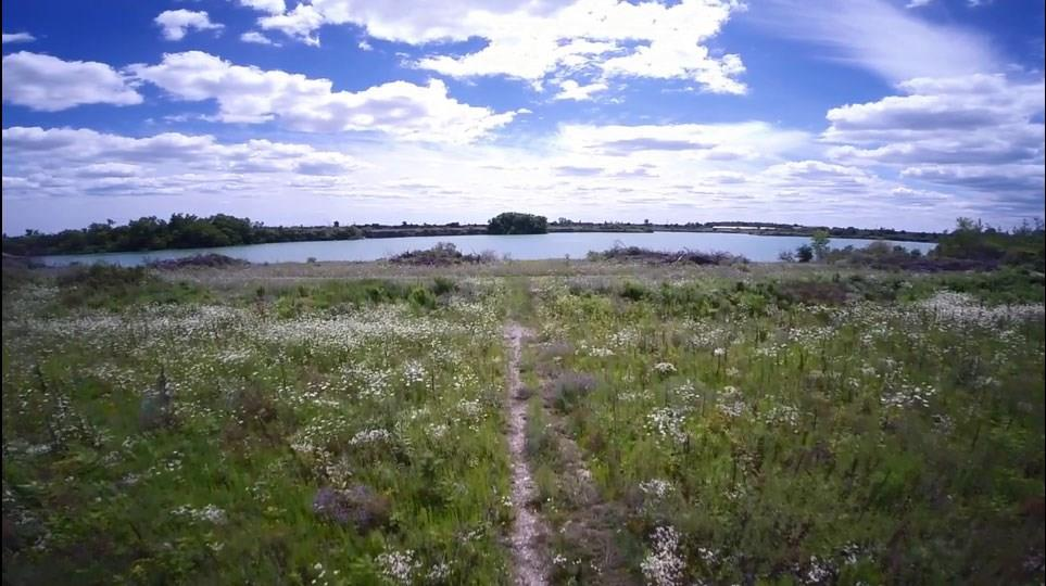 5 Edgewater Avenue, Hagersville, Ontario  N0A 1H0 - Photo 14 - H4048399
