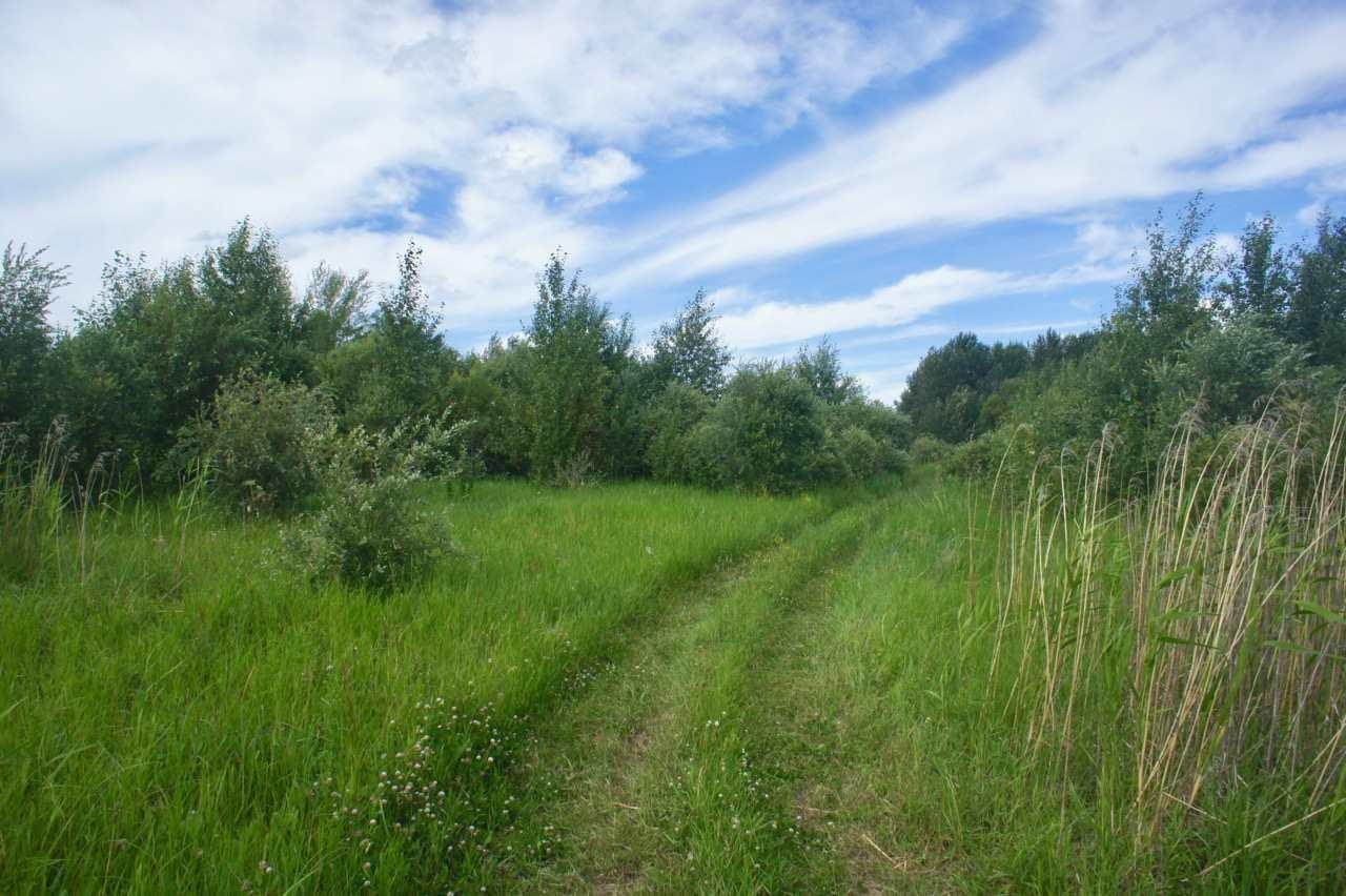 Twp 604 And Rr 122, Rural St. Paul County, Alberta  T0A 0N0 - Photo 11 - E4120912