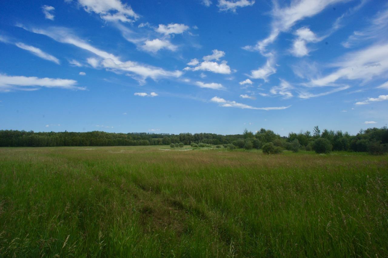 Twp 604 And Rr 122, Rural St. Paul County, Alberta  T0A 0N0 - Photo 15 - E4120912