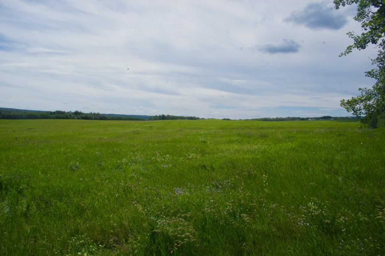 Lot 1 Twp 604 Rr 122, Rural St. Paul County, Alberta  T0A 0N0 - Photo 4 - E4120912