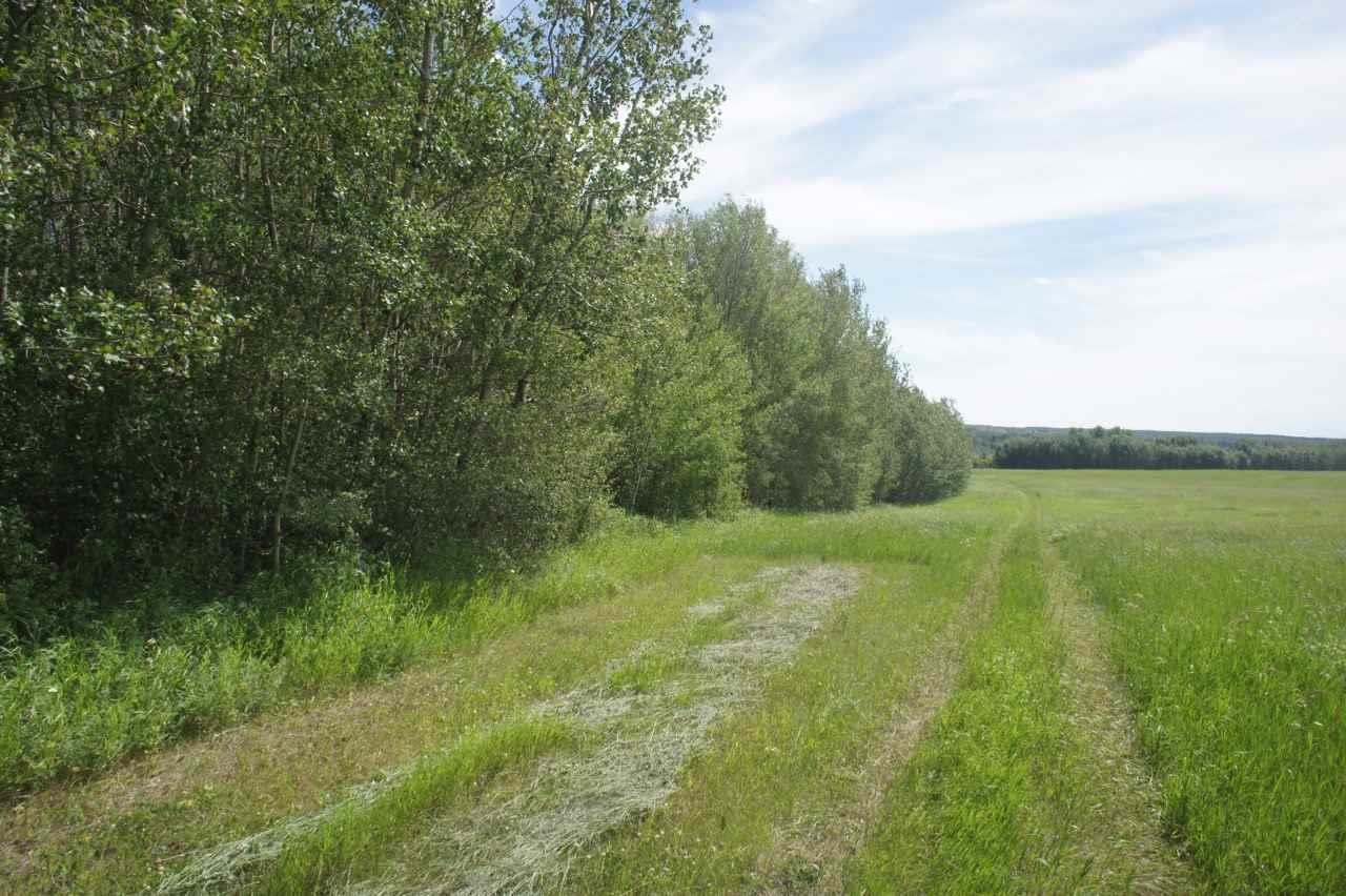 Lot 1 Twp 604 Rr 122, Rural St. Paul County, Alberta  T0A 0N0 - Photo 6 - E4120912