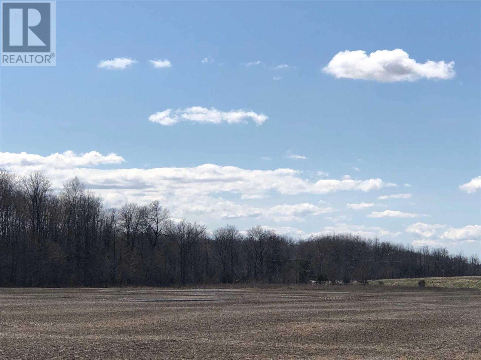 476 Penetanguishene Rd, Springwater, Ontario  L4M 4R9 - Photo 4 - S4439718