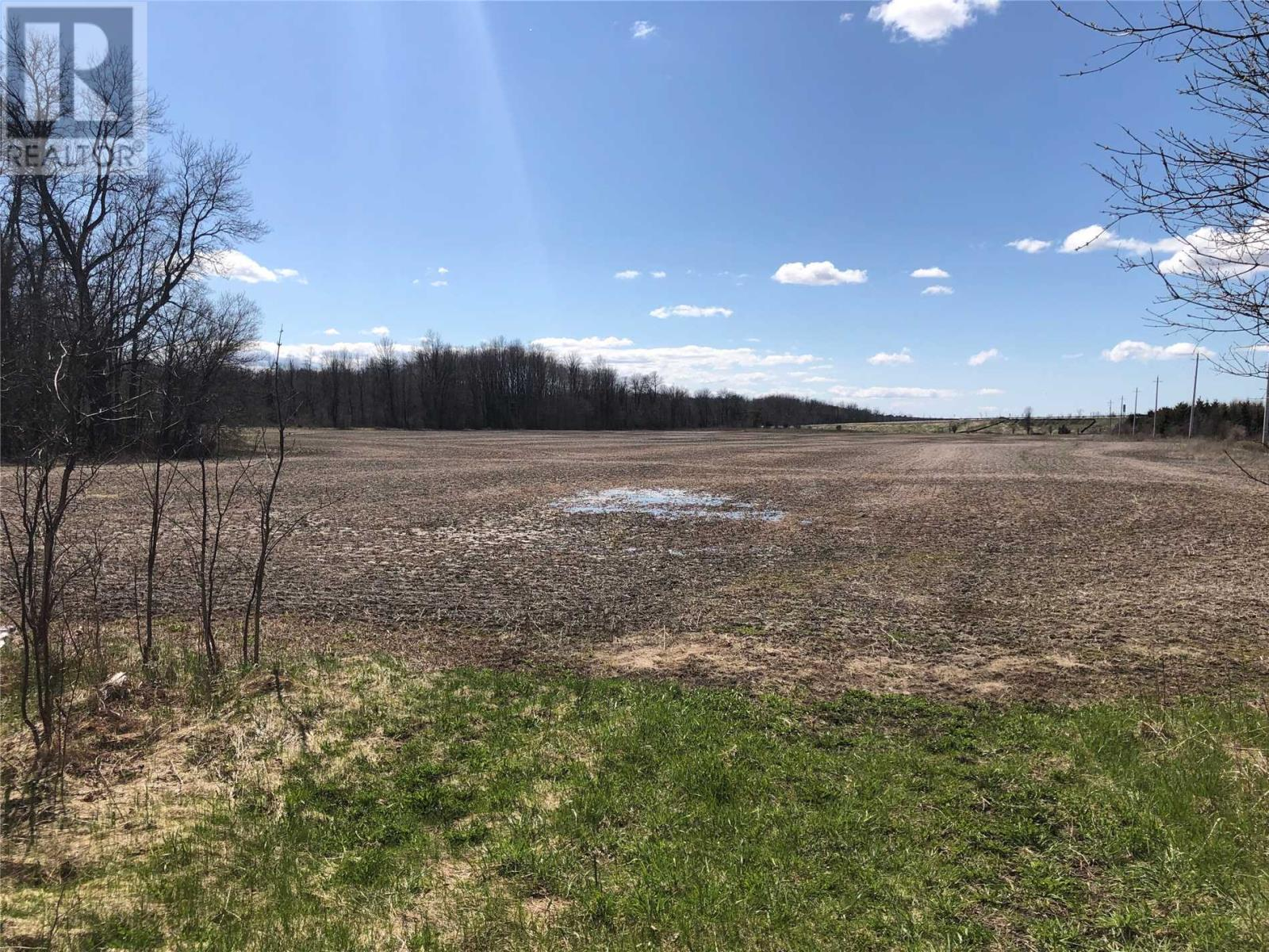 476 Penetanguishene Rd, Springwater, Ontario  L4M 4R9 - Photo 5 - S4439718