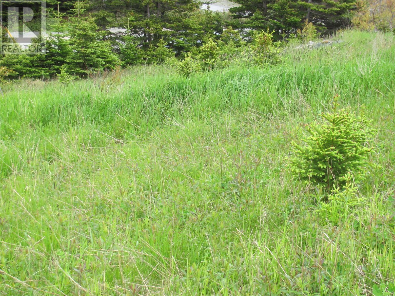 72 John Cabot Drive, Bonavista, Newfoundland & Labrador  A0C 1B0 - Photo 8 - 1197415