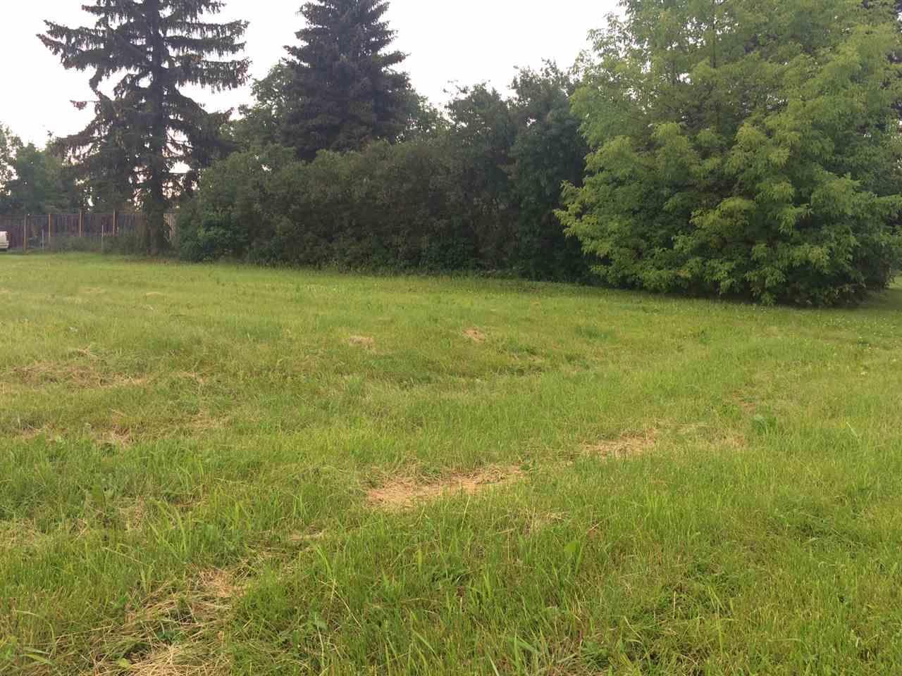 4803 53 Av, Tofield, Alberta  T0B 4J0 - Photo 5 - E4168511