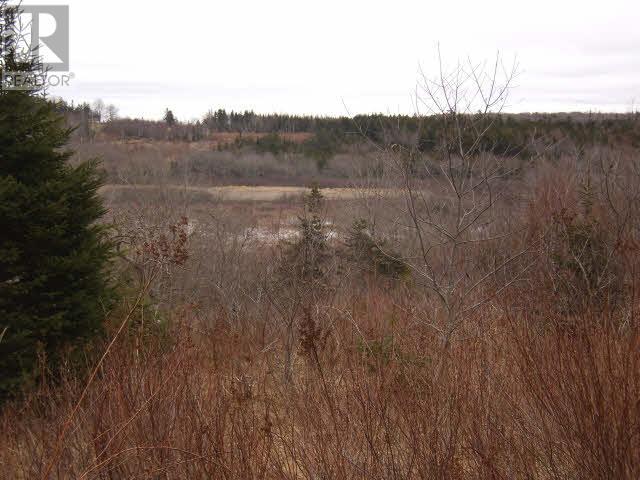 Lot Pleasant Valley, Yarmouth, Nova Scotia  B0W 3E0 - Photo 5 - 4868156