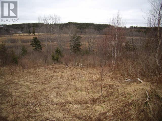 Lot Pleasant Valley, Yarmouth, Nova Scotia  B0W 3E0 - Photo 6 - 4868156
