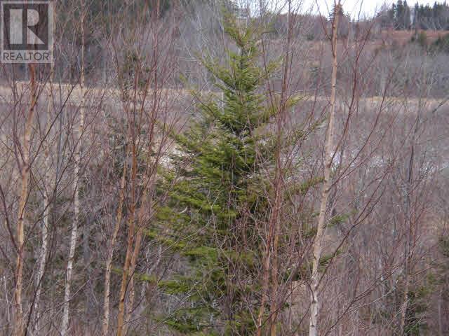 Lot Pleasant Valley, Yarmouth, Nova Scotia  B0W 3E0 - Photo 7 - 4868156