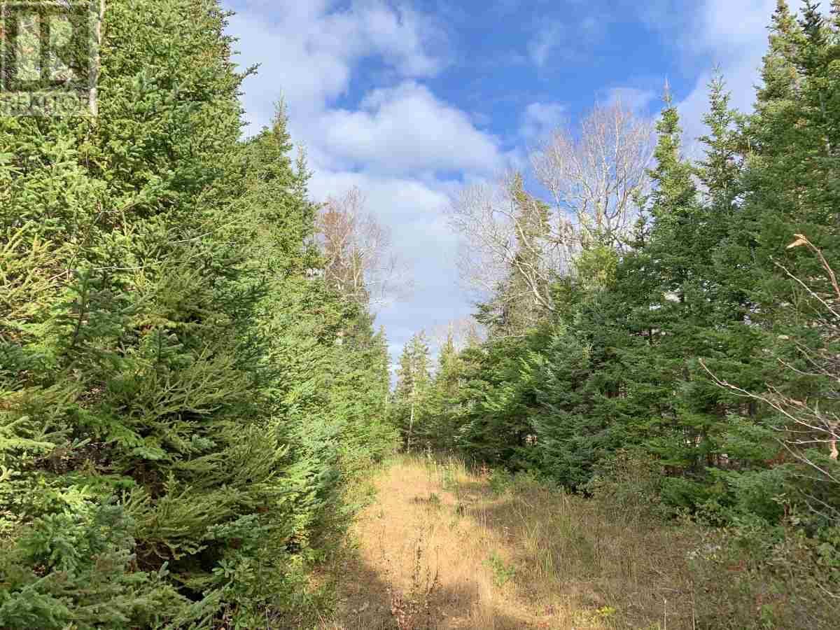 115 Michael Vogt Drive, Evans Island, Hay Cove, Nova Scotia  B0E 3B0 - Photo 20 - 201927077