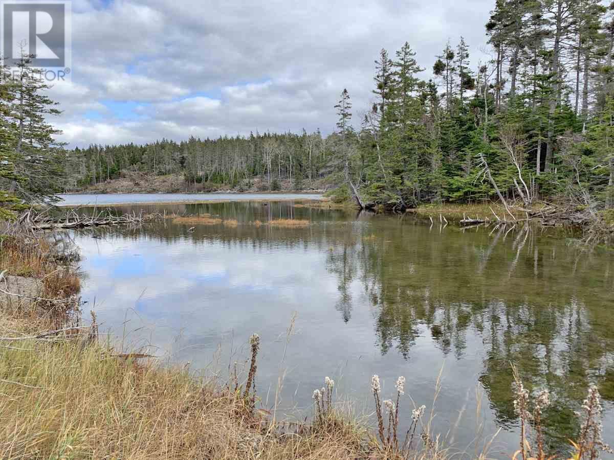 115 Michael Vogt Drive, Evans Island, Hay Cove, Nova Scotia  B0E 3B0 - Photo 5 - 201927077