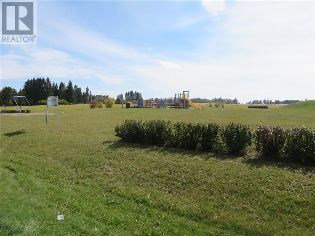 6312 47 Avenue, Rocky Mountain House, Alberta  T4T 1G3 - Photo 11 - CA0093428