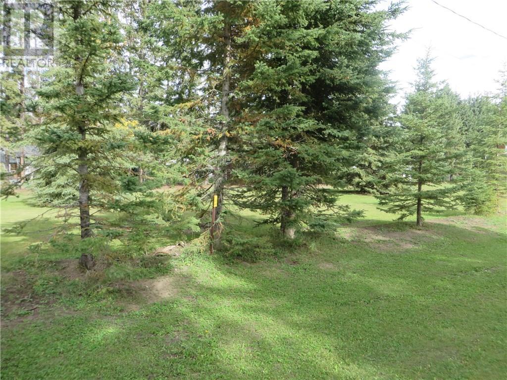 6312 47 Avenue, Rocky Mountain House, Alberta  T4T 1G3 - Photo 25 - CA0093428