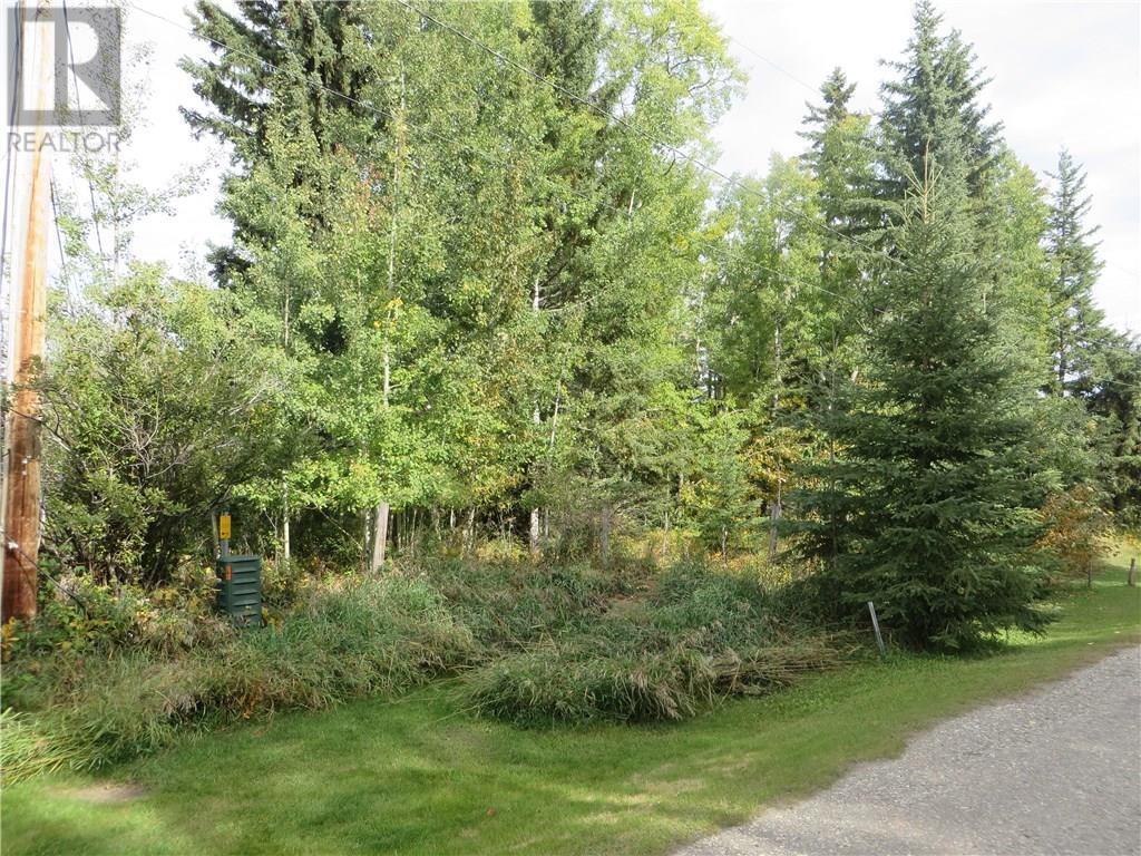 6312 47 Avenue, Rocky Mountain House, Alberta  T4T 1G3 - Photo 27 - CA0093428