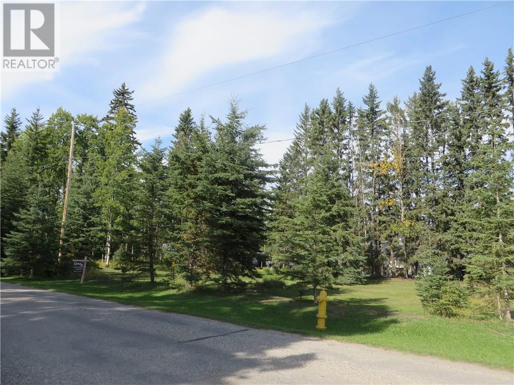 6312 47 Avenue, Rocky Mountain House, Alberta  T4T 1G3 - Photo 3 - CA0093428