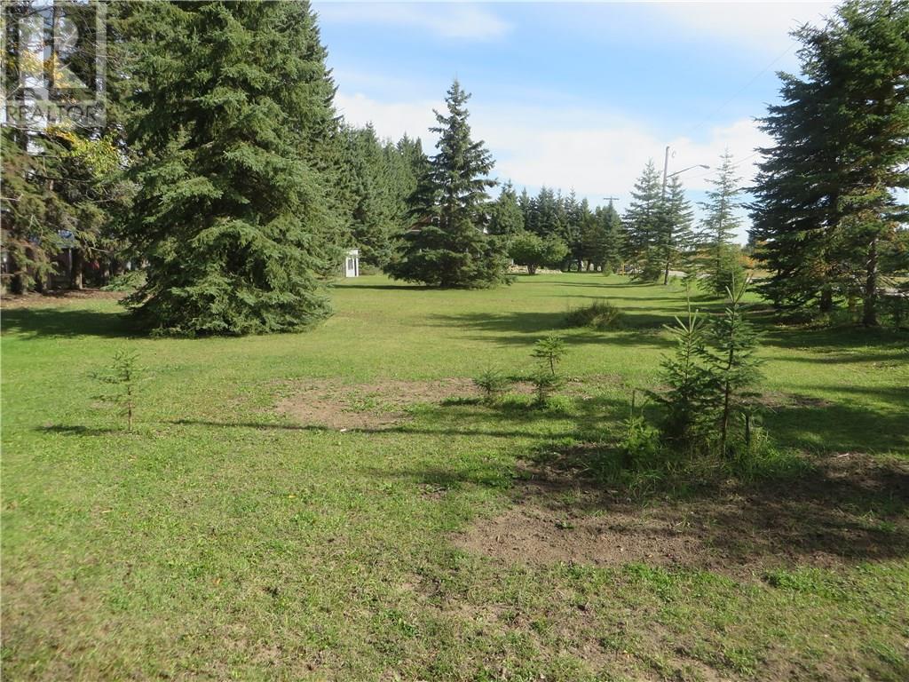 6312 47 Avenue, Rocky Mountain House, Alberta  T4T 1G3 - Photo 7 - CA0093428