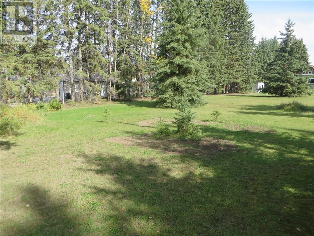 6312 47 Avenue, Rocky Mountain House, Alberta  T4T 1G3 - Photo 8 - CA0093428