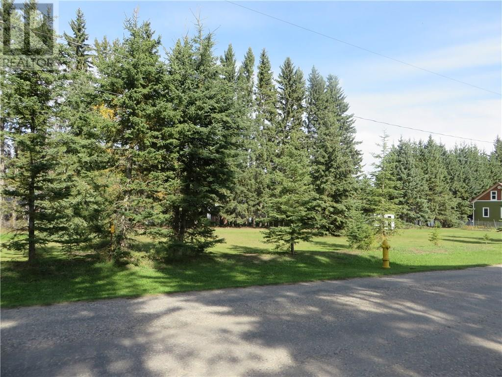 6312 47 Avenue, Rocky Mountain House, Alberta  T4T 1G3 - Photo 9 - CA0093428
