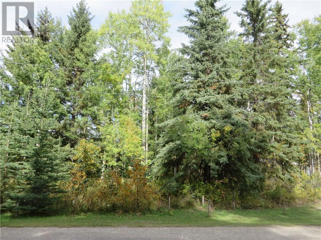 6314 47 Avenue, Rocky Mountain House, Alberta  T4T 1G3 - Photo 26 - CA0093436