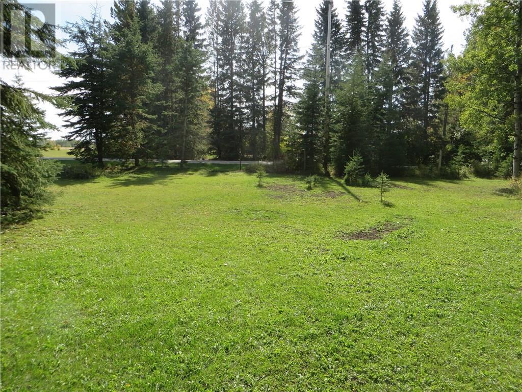 6314 47 Avenue, Rocky Mountain House, Alberta  T4T 1G3 - Photo 4 - CA0093436