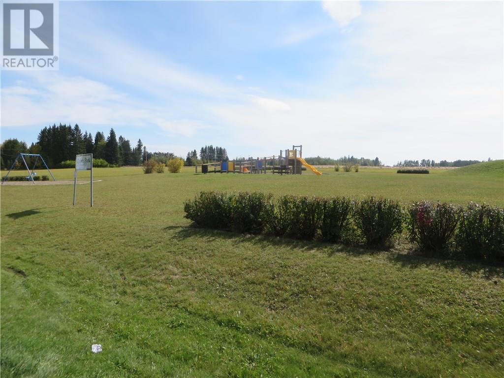 6314 47 Avenue, Rocky Mountain House, Alberta  T4T 1G3 - Photo 9 - CA0093436